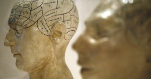 Learning a second language is good for the brain